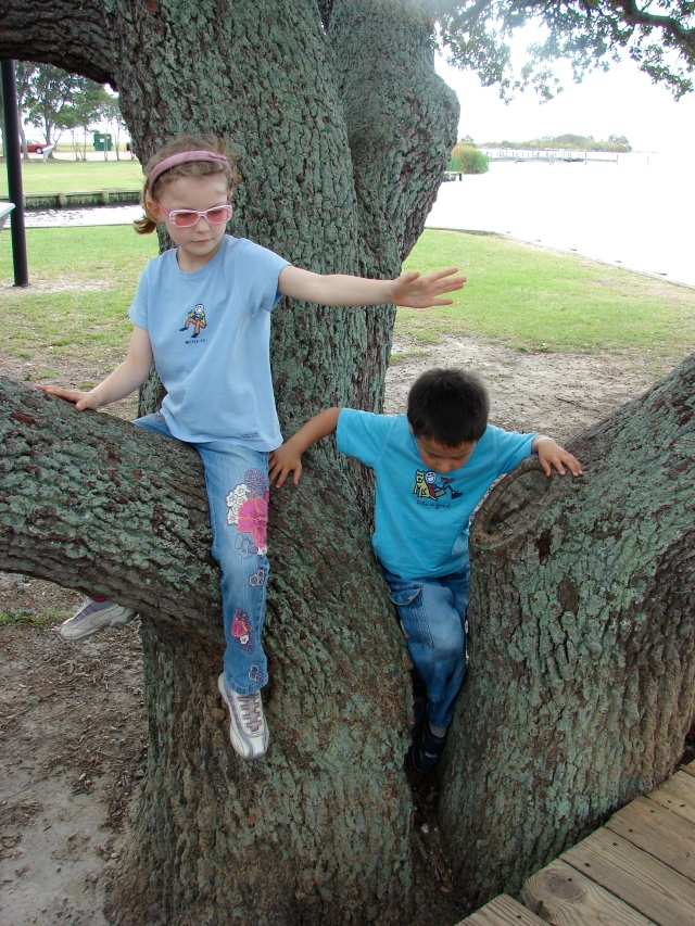 Zoe and Noah climbing a tree.  The Outer Banks, 2007